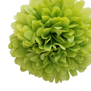 24 Leaf Green Tissue Pom Poms Flower Kissing Balls Pomanders 14