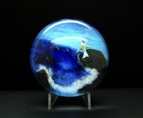 Authentic Ayotte Bird And Sea Art Glass Paperweight
