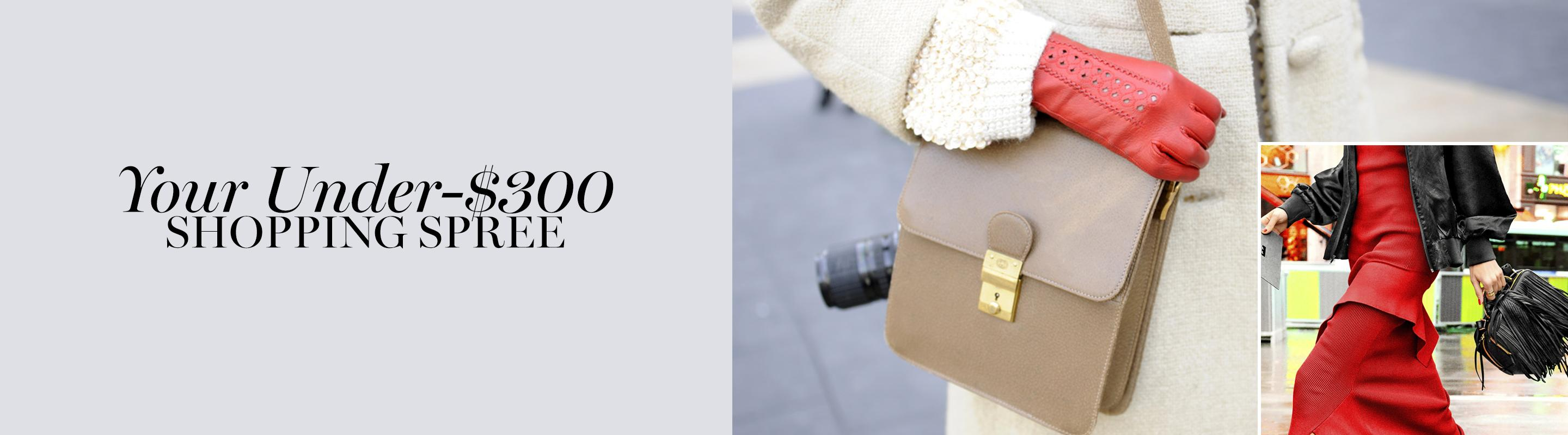Your Under $300 Shopping Spree
