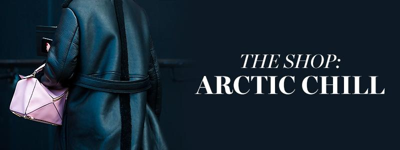 The Shop: Arctic Chill