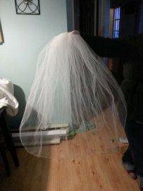 Two Layer Veil