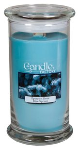 The Candle Factory The Candle Factory Large 15-Ounce Jar Crackling Candle, Blue Spruce