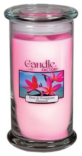 The Candle Factory The Candle Factory Large 15-ounce Jar Crackling Candle, Plumeria